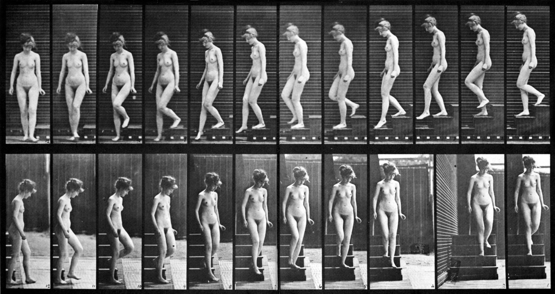 Female nude motion study by Eadweard Muybridge 2